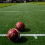 Outdoor and Indoor Cricket Matting