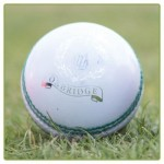 Mens-Magna-White-Cricket-Ball_large